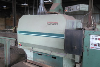Raiman KR 310